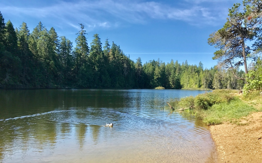 Illusion Lakes - Qualicum Beach area