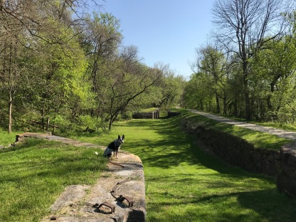 Ruins of old locks at C&O Canal Historic Park